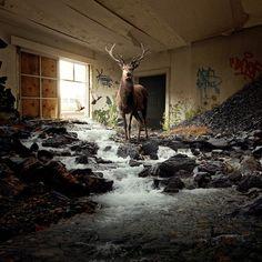 Untitled | Flickr Photo Sharing! #surreal #photography #surrealism