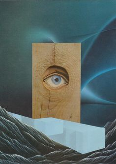 Bryan Olson Collage Illustrations (13) #design #graphic #landscape #wood #eye #collage