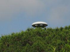 UFOunexplainedmysterylights22.jpg (1024×768) #architecture #ufo #googie
