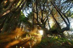 Beautiful Landscape Photography of Nature