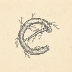 E - Heymikel #typohraphie #letter #lettering #illustration