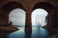 Inspiring Architecture and City Photography #water #tree #photography #drowned #bridge #arch #flood #river
