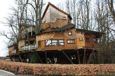 Alnwick Garden Treehouse, Alnwick, Northumberland, UK #treehouse