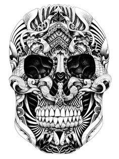 Hand drawn Illustration by Iain Macarthur
