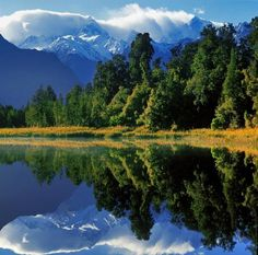 Beautiful Reflection Shots in Lake Matheson | Cuded #shots #matheson #reflection #lake #beautiful