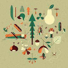 Countrylife on Behance #illsutration