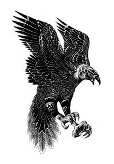 Wildlife part 2 on Behance #iain #eagle #macarthur