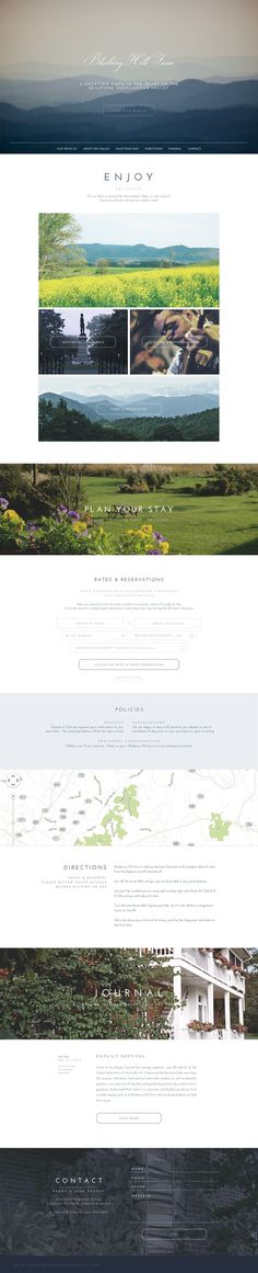 Blueberry_full #web