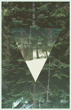 #poster #shape #forest #design #minimal #thomasadcock
