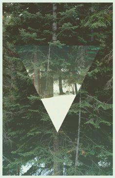 #poster #shape #forest #design #minimal #thomasadcock
