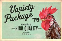 Variety Package \'79 - www.redloto.com
