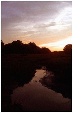 John Helmuth | Portfolio #sun #water #orange #summer #stream