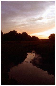 John Helmuth | Portfolio #sun #water #orange #summer #stream
