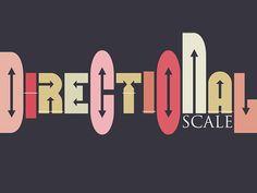 Krokodove Directional Scale #type