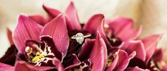 To help you find beautiful wedding rings we've collected the most interested ideas. Here are perfect wedding rings that every girl will say yes to.