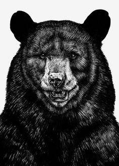 Sebastian Gomez de la Torre #illustration #drawing #bear #grizzly