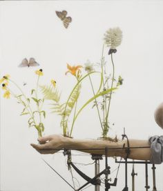Robert and Shana ParkeHarrison #butterflies #mechanism #photo #alchemy #hand #science #flowers