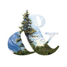 Design trends study for Pivot Group #ampersand #designtrends #forest #oregon #type