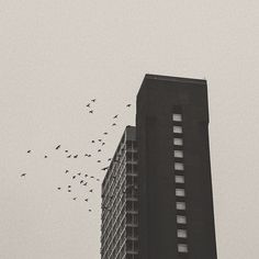 Building | SF