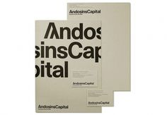 Andosins Capital / Financial, Industrial and Real Estate investment. 2007 #visual #business #capital #cabinet #identity #collateral #androsins