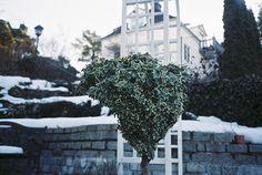 Photography by Hanna Ukura #inspration #photography #art