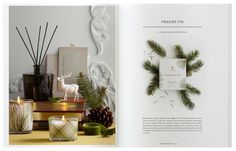 17.dieline_thymes_catalog.jpg #catalog #print #design #layout #editorial