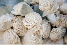 1285535_kwn3FtdN_c.jpg 470×316 pixels #photography #flowers
