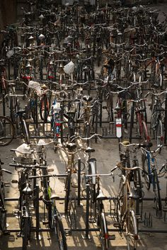 Biciclette | incontri ravvicinati #photography #bicycles #bike #diversity #italy