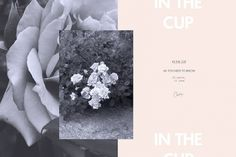 in the cup #pink #blackandwhite #invitation