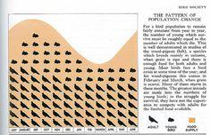 Bird population change. | Flickr: Intercambio de fotos