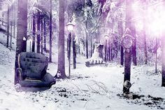 Justin M. Maller • Art Director & Illustrator • Online Portfolio #chair #forest #woods