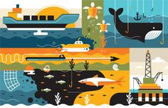 By Radio for Wired UK #conservation #illustration #environment