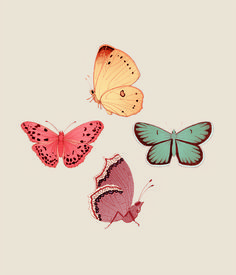 Butterfly days mariadiamantes #butterflies #illustration #design #pattern