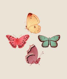 Butterfly days mariadiamantes #butterflies #illustration #design #pattern