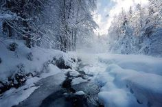 Nature Photography by Alexandre Deschaumes #inspiration #photography #nature
