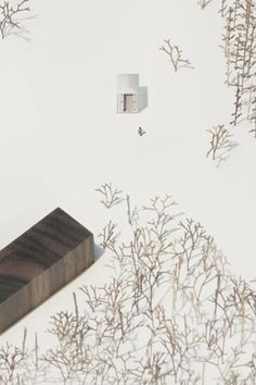 SHINGOMASUDA+KATSUHISAOTSUBO/増田信吾+大坪克亘 #plan #architecture