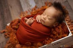 Rust Orange Newborn Fluff Cloud Basket Filler Nest Stuffer