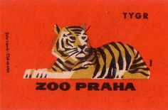 design work life » cataloging inspiration daily #labels #color #zoo #illustration #vintage #animals #tiger
