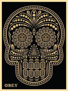ikilledjackjohnson #skull #obey