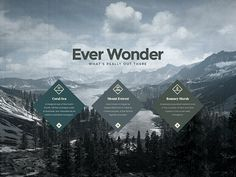 EVER WONDER™ // Branding on Behance