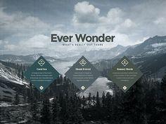 EVER WONDER™ // Branding on Behance