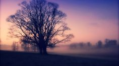 Lomography Landscape Wallpaper #inspiration #photography #landscape