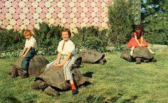 http://blog.wanken.com/9030/womens-fashion-of-the-60s/ #fashion #60s