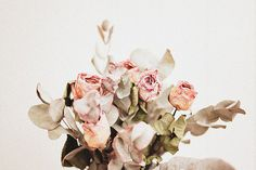 // #roses #flowers