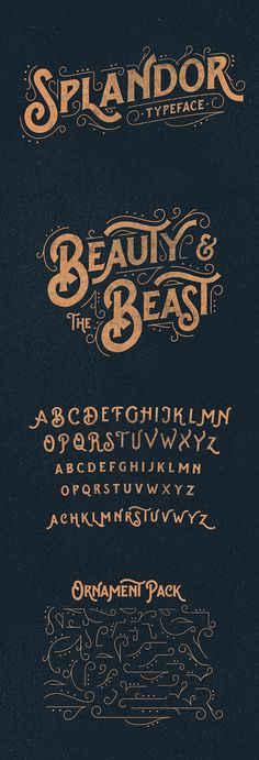Splandor Typeface by Ilham Herry #typography #inspiration #creative #typeface