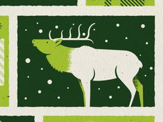 IMM Holiday card #card #snow #elk #colorado #nature #holiday #green