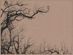 FFFFOUND! | Tumblr #tree