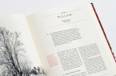 The new sylva - Grade design #layout #editorial