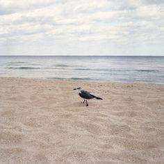 Maggie Harrsen #harrsen #photography #maggie