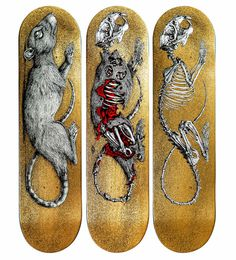 Decaying Skate Decks for Skateistan by ROA x Sk8rooom [Video] #koa #decaying #skateboards